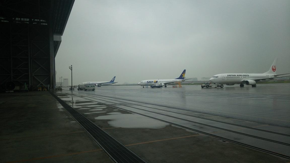 Jal_aircraft4