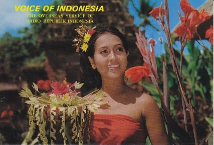 Voice_of_indonesia